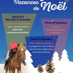 stage-equitation-noel-2016